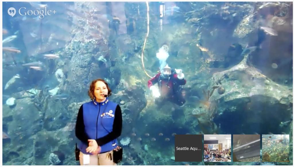 Seattle Aquarium Virtual Field Trip